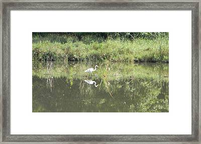 Hunter Reflected 1 Framed Print