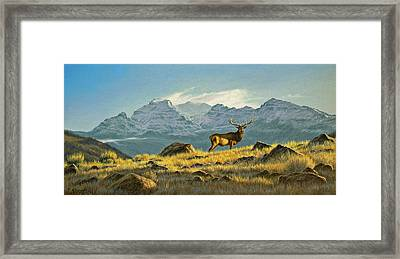 Hunter's Dream - Elk Framed Print by Paul Krapf