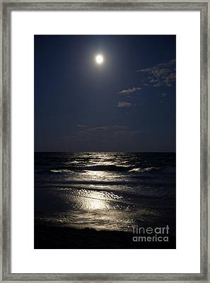 Hunter's Moon Iv Framed Print by Michelle Wiarda