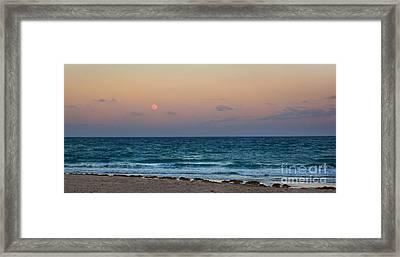 Hunter's Moon Framed Print by Michelle Wiarda