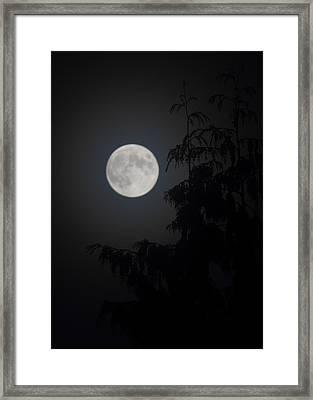 Hunters Moon Framed Print