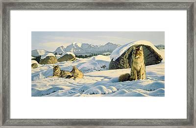 Hunter's Rest Framed Print by Paul Krapf