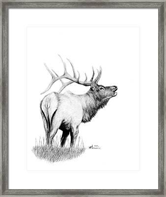 Hunters Target Framed Print by Kayleigh Semeniuk