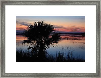 Hunting Isalnd Tidal Marsh Framed Print by Michael Weeks