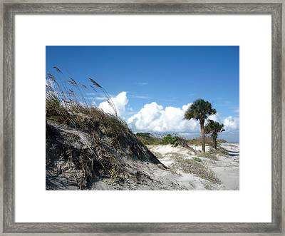 Hunting Island - 9 Framed Print by Ellen Tully
