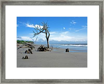 Framed Print featuring the photograph Hunting Island - 1 by Ellen Tully