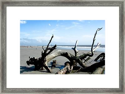 Framed Print featuring the photograph Hunting Island - 2 by Ellen Tully