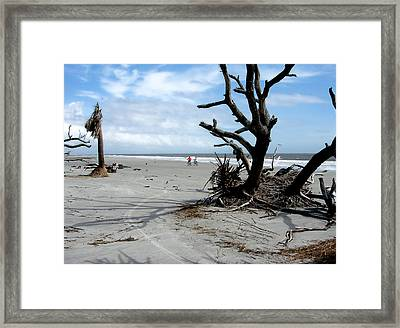 Framed Print featuring the photograph Hunting Island - 5 by Ellen Tully