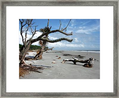 Framed Print featuring the photograph Hunting Island - 7 by Ellen Tully