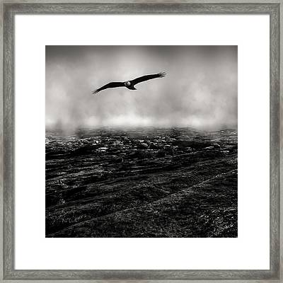 Hunting The Fog Line Framed Print by Bob Orsillo