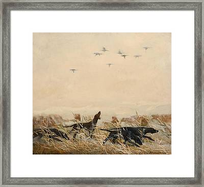 Hunting Framed Print by Victoria Kharchenko