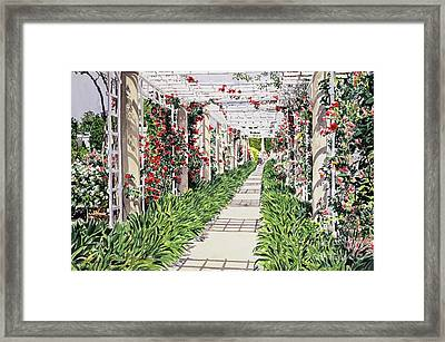Huntington Rose Arbor Framed Print by David Lloyd Glover