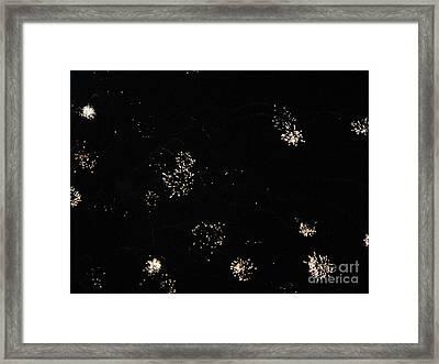 Huron Ohio Fireworks 6 Framed Print by Jackie Bodnar