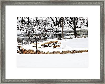 Huron River Framed Print