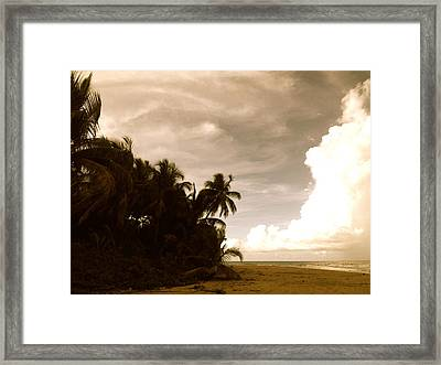 Hurricane Sandy Framed Print by Danielle  Broussard