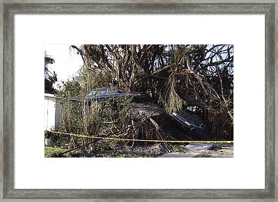 Hurricane Wilma Revenge In Pompano Beach  Framed Print