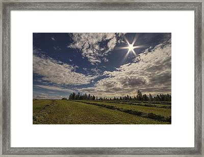 Hurry Up And Dry Framed Print