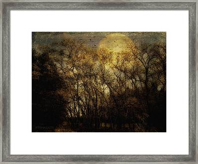 Hush Now Framed Print