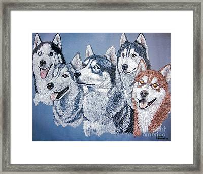 Huskies By J. Belter Garfunkel Framed Print by Sheldon Kralstein