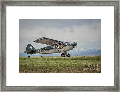 Husky Framed Print by Nathan Gingles