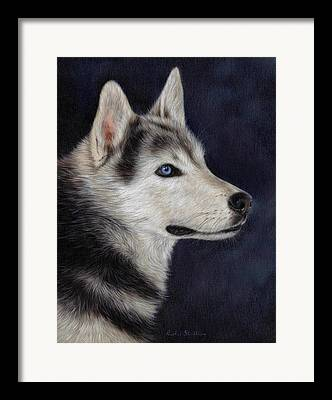 Husky Art Framed Prints