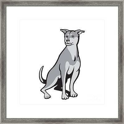 Husky Shar Pei Cross Dog Sitting Cartoon Framed Print by Aloysius Patrimonio