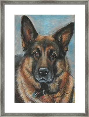 Hussler-german Shepherd Dog Framed Print by Sciandra