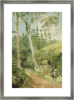 Hut In The Jungle Circa 1816 Framed Print by Aged Pixel