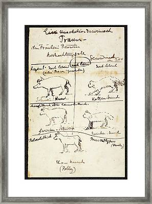 Huxley On Charles Darwin's Dog Framed Print by British Library