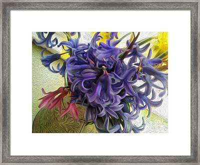 Blue Hyacinth With Daffodils  Framed Print