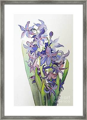 Hyacinthus Framed Print by Shirin Shahram Badie