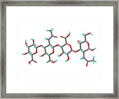 Hyaluronic Acid Molecule Framed Print