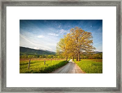 Hyatt Lane Cade's Cove Great Smoky Mountains National Park Framed Print