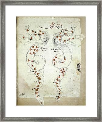 Hydra Constellation Framed Print