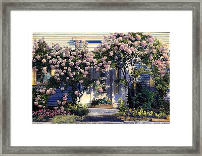 Hydrangeas Framed Print by Cindy McIntyre