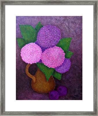 Hydrangeas Framed Print by Madalena Lobao-Tello
