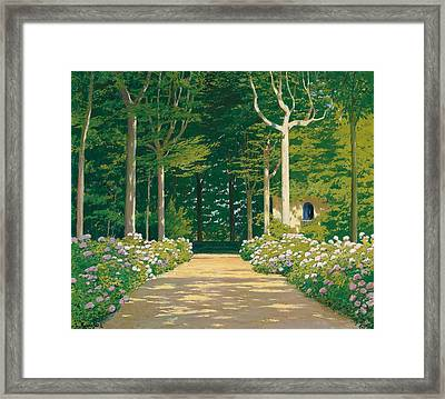 Hydrangeas On A Garden Path Framed Print by Santiago Rusinol i Prats