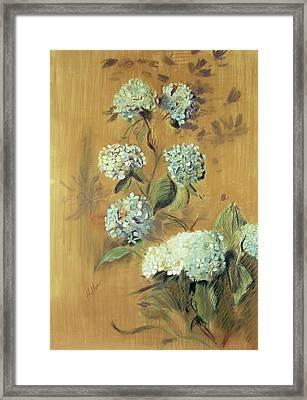 Hydrangeas Framed Print by Paul Cesar Helleu