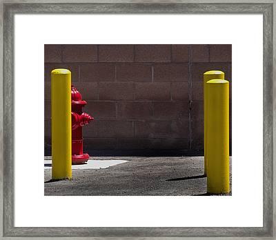 Hydrant Framed Print by Kevin Duke