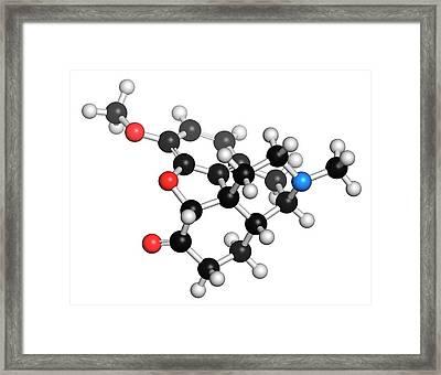 Hydrocodone Narcotic Analgesic Drug Framed Print by Molekuul