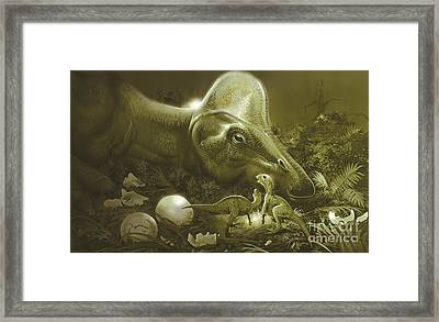 Hypacrosaurus Protecting Its Nest Framed Print by Jan Sovak