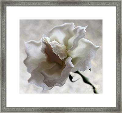 I Adore You Framed Print by Krissy Katsimbras