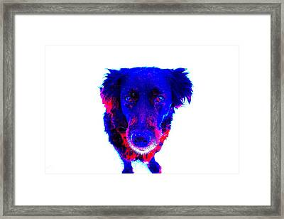 I Am All Yours, But Then You Belong To Me  Framed Print