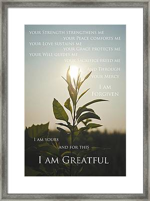 I Am Greatful Framed Print by Swift Family