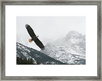 I Am The Eagle Framed Print