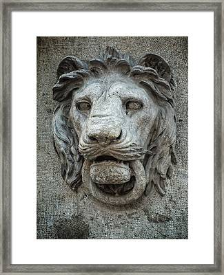 I Am The Guardian - Hear Me Roar Framed Print by Lucinda Walter