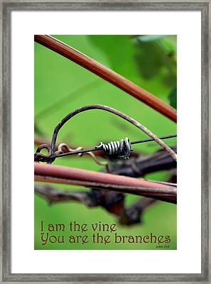 I Am The Vine Framed Print by Angelina Vick