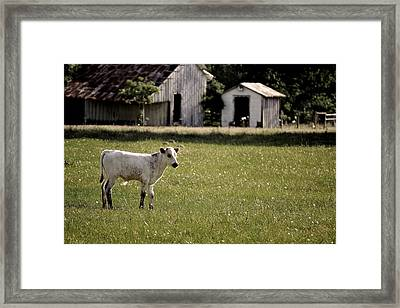 I Am Waiting Framed Print