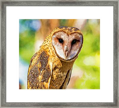 Framed Print featuring the photograph I Am Wise Photo Art by Constantine Gregory