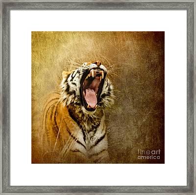 I Am Woman Hear Me Roar Framed Print by Betty LaRue